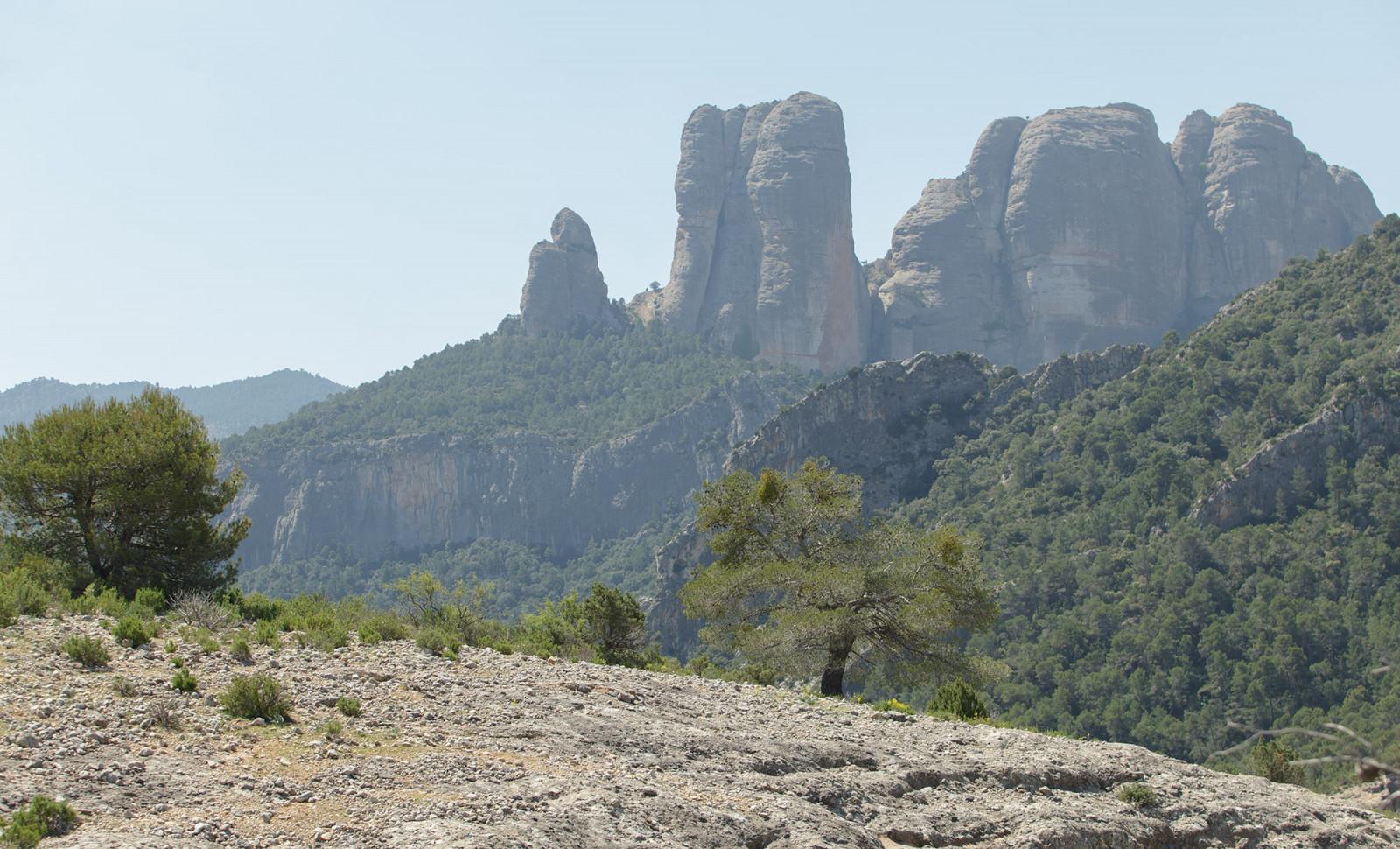 Vista de la cara nord de les Roques de Benet
